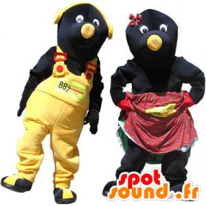 2 mascottes, couple de taupes noires et jaunes - MASFR032980 - Animaux de la forêt