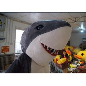 Maskotka szary i biały rekin z wielkimi zębami