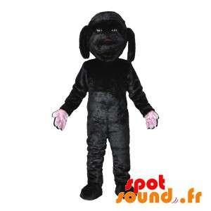 Black Dog Mascot, søt og...