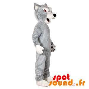 Grå og hvit ulv maskot....