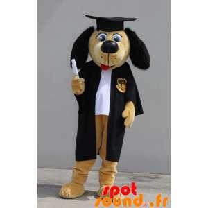 Pies maskotka absolwent....