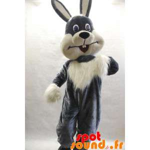 Gray And White Bunny...