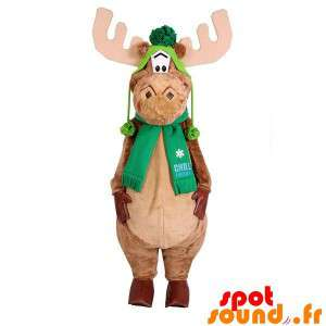 Mascot Moose, Caribou With...