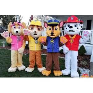4 cães mascotes, um...