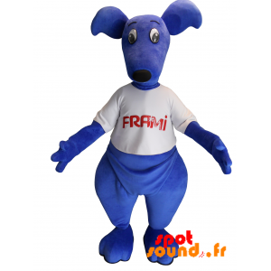 Blå kænguru-maskot med en t-shirt. Frami maskot - Spotsound