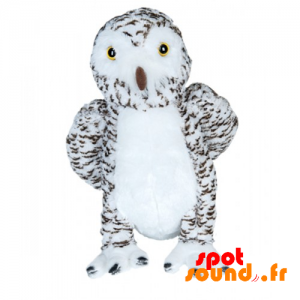 Owl Stuffed With White And Brown Fluff, Very Realistic