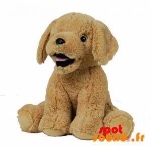 Beige Plush Dog, Soft And Hairy. Plush Dog