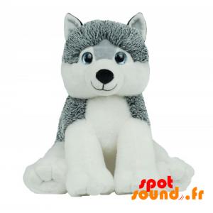 Chien husky en peluche, gris et blanc. Peluche Husky