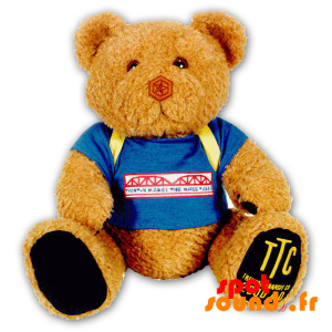 Brown Teddy, Stuffed With A Binder - PELFR040295 - plush