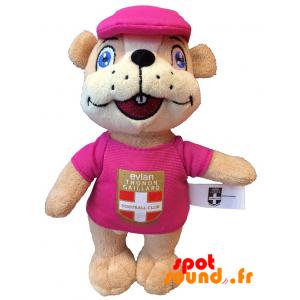 Marmotte ETG FC en peluche. Peluche marmotte ETG FC - PELFR040333 - plush