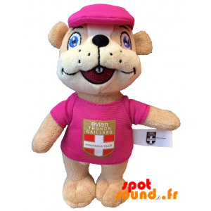 Marmotte Etg Fc Peluche. Peluche Fc Groundhog Etg - PELFR040333 - plush