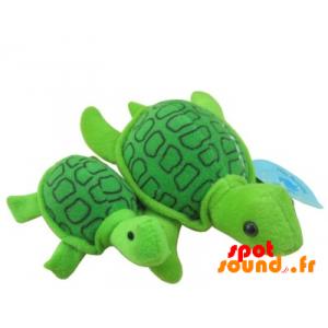 Tortue en peluche, sur mesure. Peluche tortue verte - PELFR040353 - plush