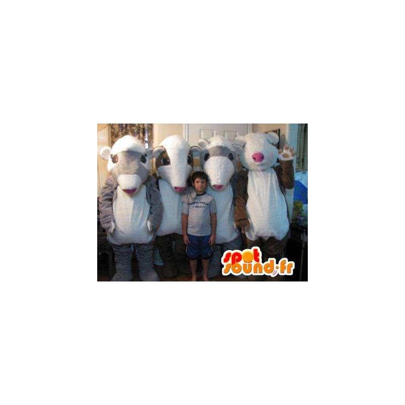 Quartett Maskottchen Meerschweinchen-Kostüm für vier - MASFR002252 - Maskottchen Schwein