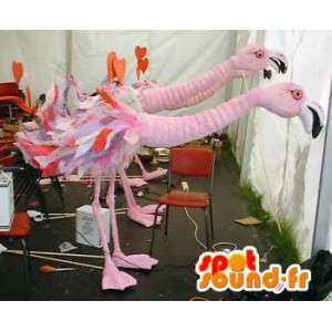 Mascots two flamingos - Pack 2 costumes flamingo