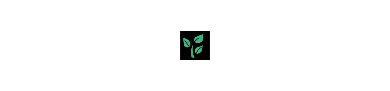 Pflanzenmaskottchen - Klassische Maskottchen -