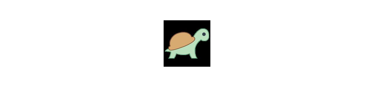 Ocean mascots - Animal mascots - Spotsound mascots