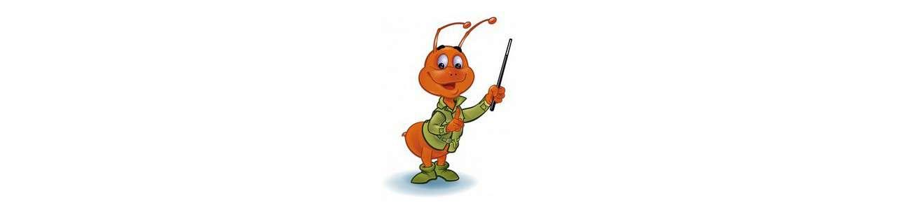 Mascotes insetos - Animais da floresta - Mascotes