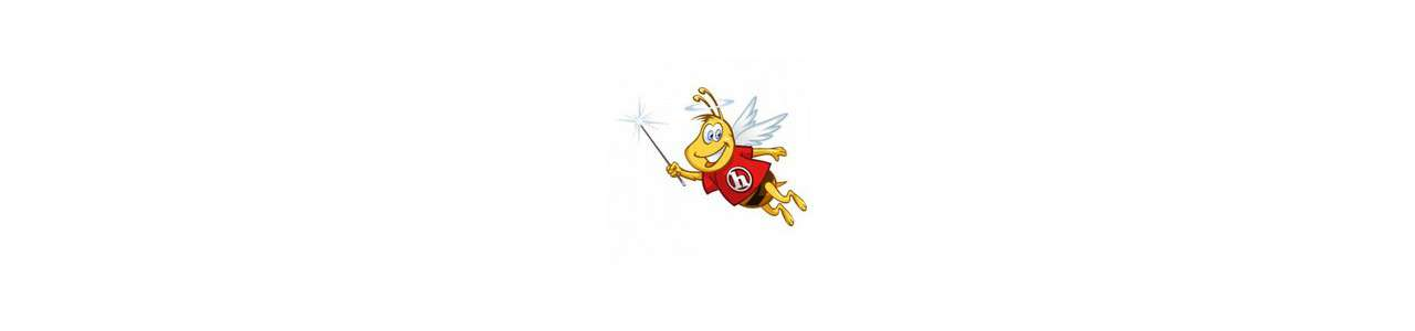 Fairy mascots - Human mascots - Spotsound mascots