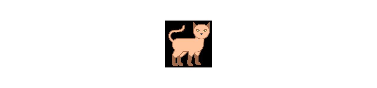 Animali domestici - Mascotte animali - Mascotte
